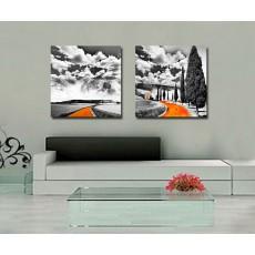 Tranh ghép bộ 2 bức nghệ thuật DH1887A kích thước 30x30cmx2B)