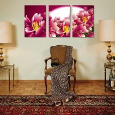 Tranh ghép bộ 3 bức nghệ thuật DH1477A (kích thước 120x60cm)
