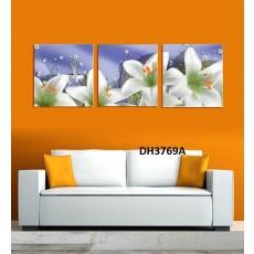 Tranh treo tường 3 bức  nghệ thuật DH3769A