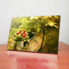 Tranh đồng hồ để bàn xe đạp TB013
