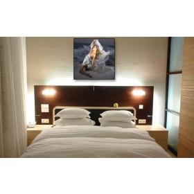 Tranh chân dung trang trí phòng ngủ DH321 (kích thước 60x60cm)