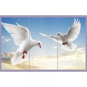Tranh đồng hồ bộ 3 tấm chim bồ câu DH620A